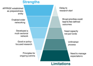 Strengths and limitations of a consultation approach for establishing a public health research network
